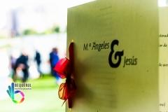 MªAngeles y Jesus-7